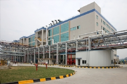 Active Pharmaceutical Ingredient Plant